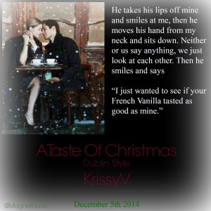 Author Krissy V A Taste of Christmas Teaser ATOCKV2