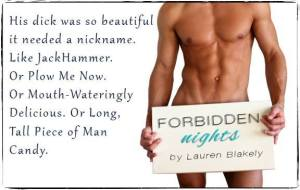 Author lauren blakely forbidden nights teaser