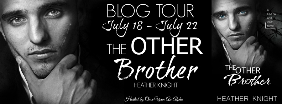 Author Heather Knight TheOtherBrotherBTBanner 7.18.16
