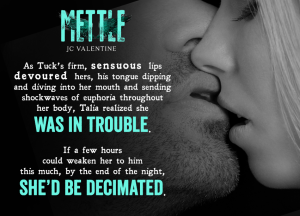 Author J. C. Valentine Mettle teaser 1 7.26.16