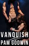Pam Godwin Vanquish Cover 8.31.16