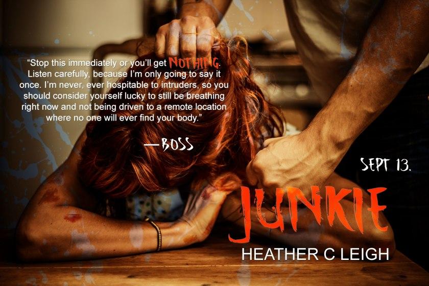 heather-c-leigh-junkiead4-19-5-16